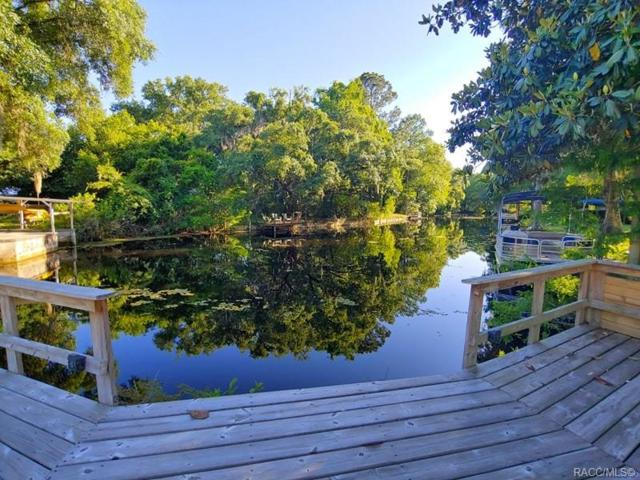 5460 S Pike Way, Floral City, FL 34436 (MLS #782359) :: Plantation Realty Inc.