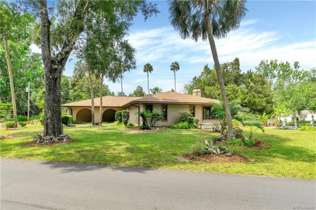 4361 S Purslane Drive, Homosassa, FL 34448 (MLS #782496) :: Plantation Realty Inc.
