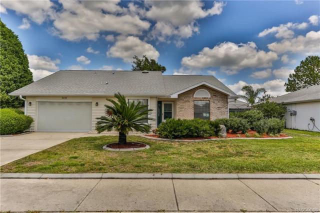 3645 E Arbor Lakes Drive, Hernando, FL 34442 (MLS #782565) :: Plantation Realty Inc.