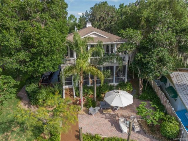 1306 SE Kings Bay Drive, Crystal River, FL 34429 (MLS #782778) :: Plantation Realty Inc.