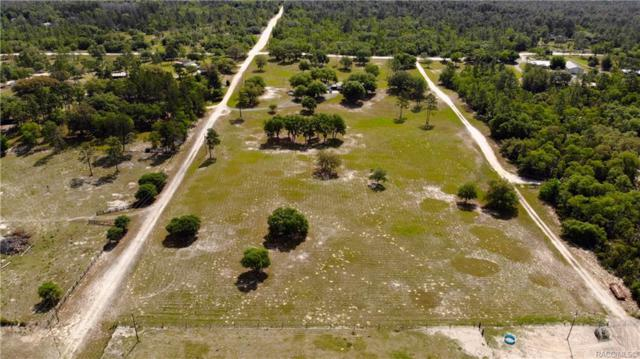 12530 NE 47 Street, Williston, FL 32696 (MLS #782818) :: Pristine Properties