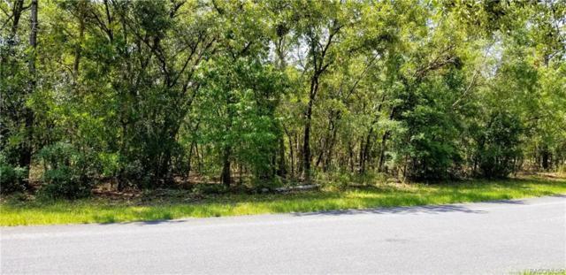 4421 N Little Dove Terrace, Hernando, FL 34442 (MLS #782967) :: Plantation Realty Inc.