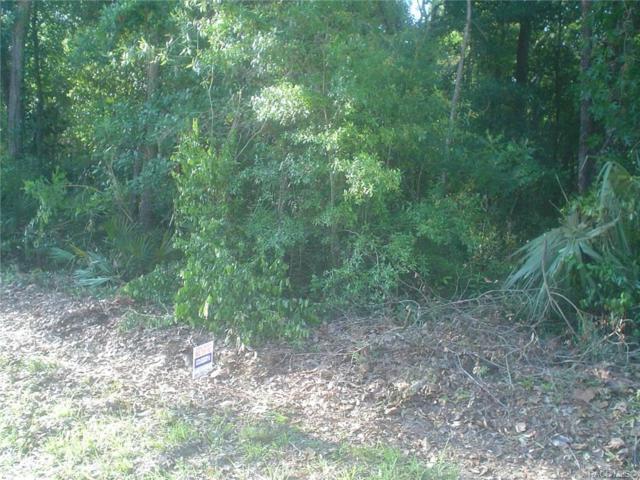 Homosassa, FL 34448 :: Pristine Properties