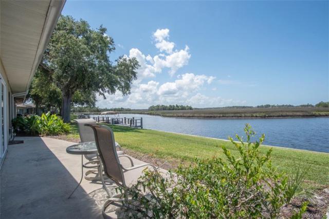 11562 W Bayshore Drive #18, Crystal River, FL 34429 (MLS #783068) :: Plantation Realty Inc.