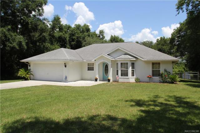 3783 E Perry Street, Inverness, FL 34453 (MLS #783090) :: Pristine Properties