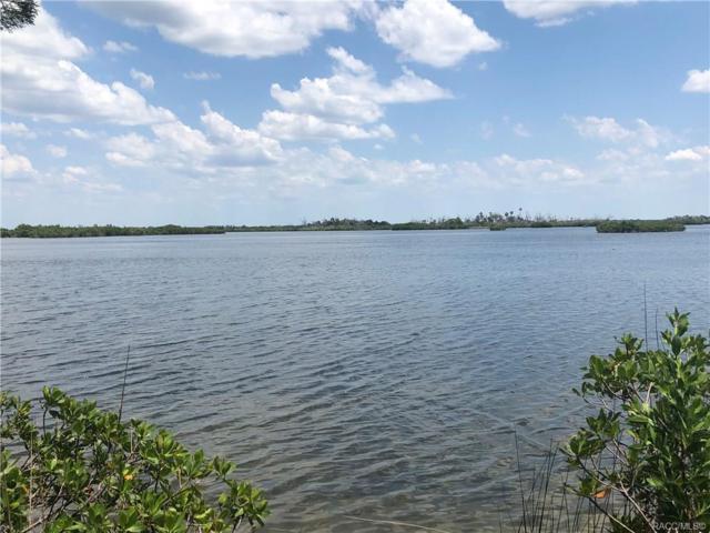 17 & 19 N Spangler Loop, Crystal River, FL 34429 (MLS #783183) :: Plantation Realty Inc.