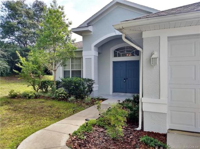71 N Youngtree Point, Lecanto, FL 34461 (MLS #783184) :: Plantation Realty Inc.