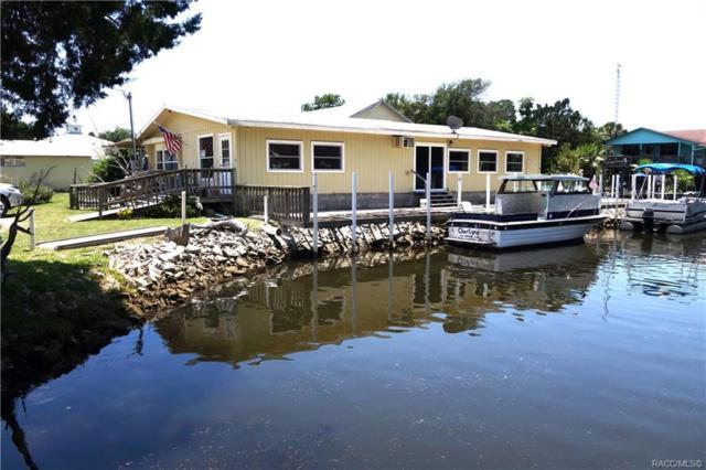2130 S Waterman Drive, Crystal River, FL 34429 (MLS #783392) :: Pristine Properties