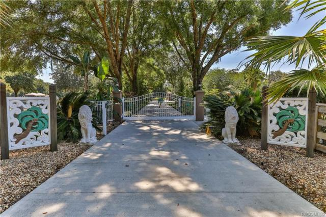 9780 S Istachatta Road, Floral City, FL 34436 (MLS #783408) :: Plantation Realty Inc.