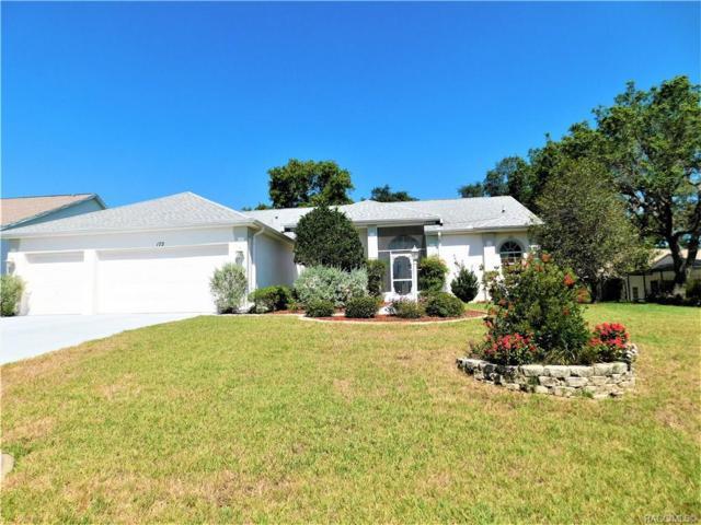 172 N Skyflower Point, Lecanto, FL 34461 (MLS #783482) :: Plantation Realty Inc.