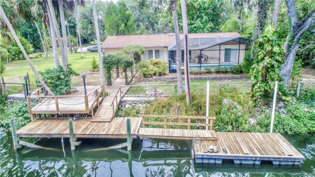 16 Palm Circle Drive, Inglis, FL 34449 (MLS #783559) :: Plantation Realty Inc.