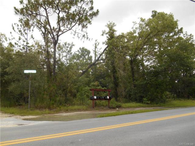 6025 W Meadow Street, Homosassa, FL 34446 (MLS #783726) :: Plantation Realty Inc.