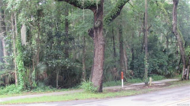 TBD NE Crystal Street, Crystal River, FL 34428 (MLS #783742) :: Plantation Realty Inc.