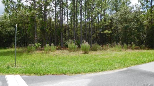 2568 N Stampede Drive, Beverly Hills, FL 34465 (MLS #783901) :: Pristine Properties