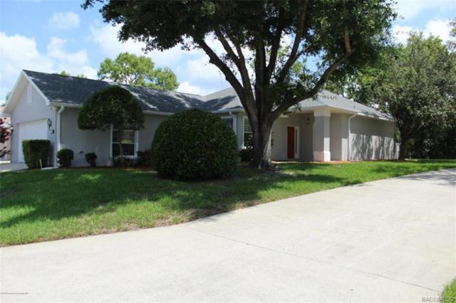 86 W Byrsonima Loop, Homosassa, FL 34446 (MLS #784045) :: Plantation Realty Inc.