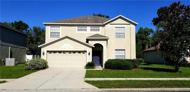 4023 Braemere Drive, Spring Hill, FL 34609 (MLS #784047) :: Pristine Properties