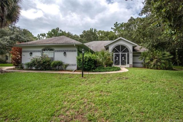 1640 E Monopoly Loop, Inverness, FL 34453 (MLS #784230) :: Plantation Realty Inc.