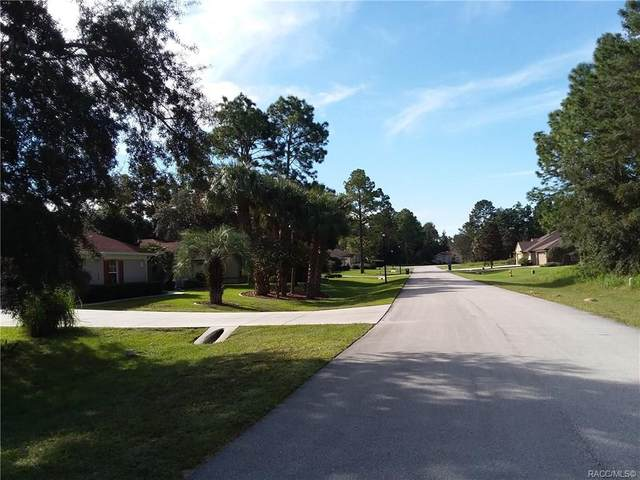 3 Woodlee Court S, Homosassa, FL 34446 (MLS #784382) :: Plantation Realty Inc.