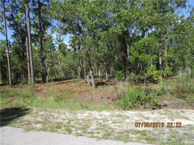 00 S 135th Court, Dunnellon, FL 34435 (MLS #784496) :: Plantation Realty Inc.