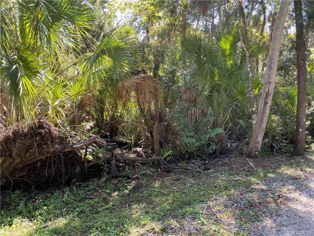 10636 W Paros Path, Homosassa, FL 34448 (MLS #784872) :: Plantation Realty Inc.