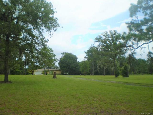 11 S Salisbury Terrace, Lecanto, FL 34461 (MLS #785136) :: Plantation Realty Inc.