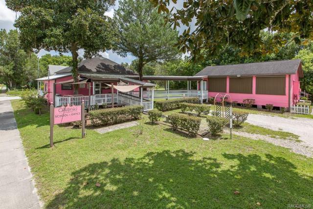 20782 Park Avenue, Dunnellon, FL 34431 (MLS #785242) :: Plantation Realty Inc.