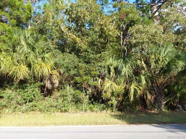 1225 S Candlenut Avenue, Homosassa, FL 34448 (MLS #786691) :: Plantation Realty Inc.
