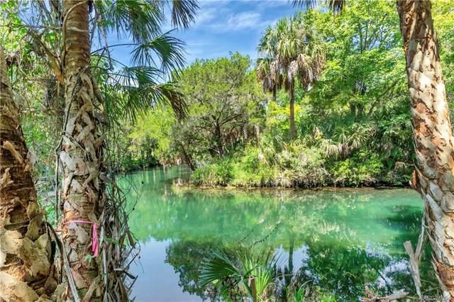2252 S Andes Point, Homosassa, FL 34448 (MLS #786769) :: Pristine Properties