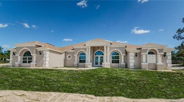 11078 Desert Sparrow Avenue, Weeki Wachee, FL 34613 (MLS #786954) :: Plantation Realty Inc.