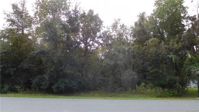1664 E Saint James Loop, Inverness, FL 34453 (MLS #787091) :: Plantation Realty Inc.