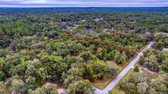 4016 N Elwyn Point, Hernando, FL 34442 (MLS #787176) :: Plantation Realty Inc.