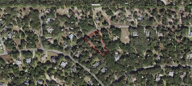 1300 E Ridgefield Drive, Hernando, FL 34442 (MLS #787328) :: Plantation Realty Inc.
