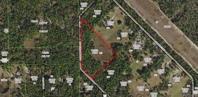 5585 N Sierra Vista Drive, Crystal River, FL 34428 (MLS #787331) :: Plantation Realty Inc.