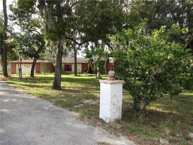 11341 Pine Forest Drive, New Port Richey, FL 34654 (MLS #787431) :: Pristine Properties