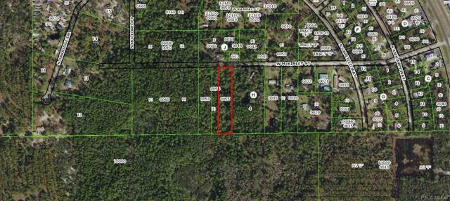 7636 W Mckinley Street, Homosassa, FL 34448 (MLS #787443) :: Plantation Realty Inc.