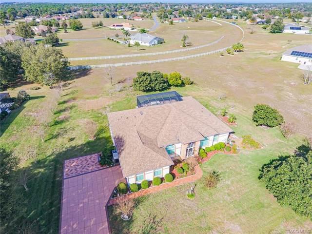 172 N Hambletonian Drive, Inverness, FL 34453 (MLS #787448) :: Plantation Realty Inc.