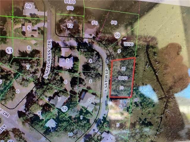 4655 S Gator Loop, Homosassa, FL 34448 (MLS #787582) :: Plantation Realty Inc.