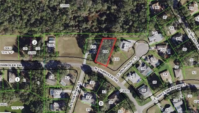 343 E Cumberland Court, Hernando, FL 34442 (MLS #787698) :: Pristine Properties
