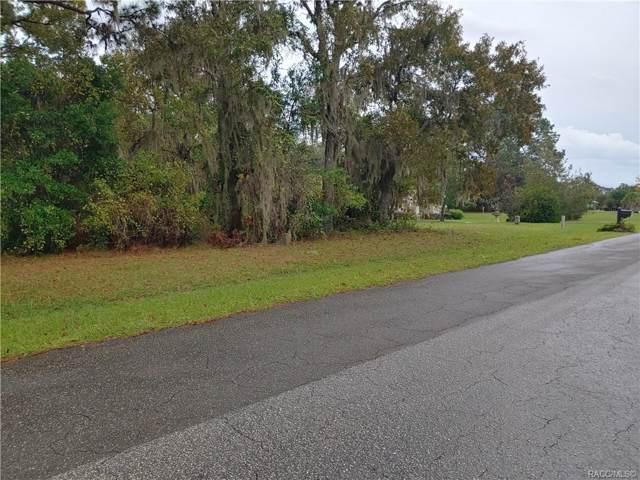 1199 N Hambletonian Drive, Hernando, FL 34442 (MLS #787703) :: Plantation Realty Inc.