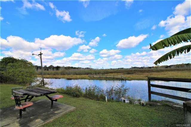 7959 E Stump Lane, Inverness, FL 34453 (MLS #787957) :: Plantation Realty Inc.