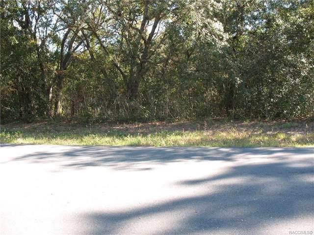 2906 W Camilo Drive, Citrus Springs, FL 34434 (MLS #788135) :: 54 Realty