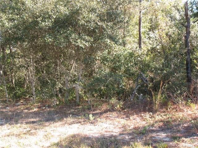 2912 W Camilo Drive, Citrus Springs, FL 34433 (MLS #788137) :: 54 Realty