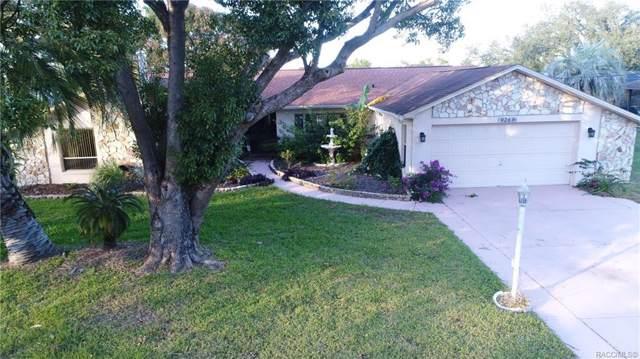 9269 Dunkirk Road, Spring Hill, FL 34608 (MLS #788143) :: Plantation Realty Inc.