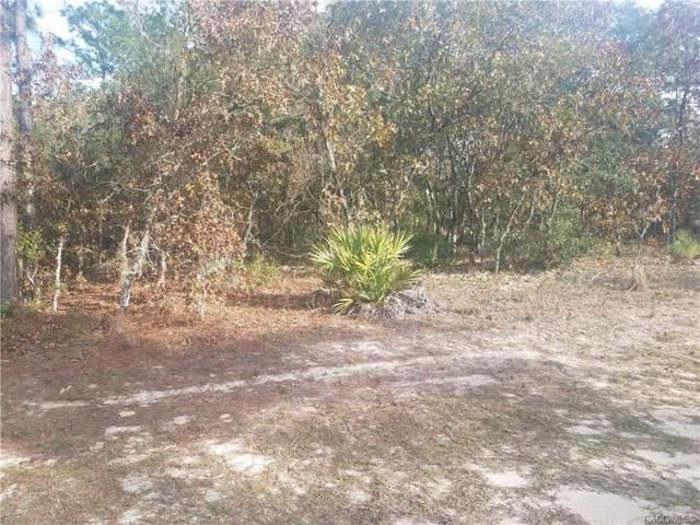 7287 N Tranquil Drive, Citrus Springs, FL 34434 (MLS #788148) :: 54 Realty