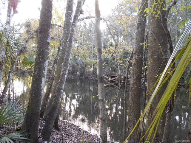 386 S Tuck Point, Inverness, FL 34450 (MLS #788221) :: Plantation Realty Inc.