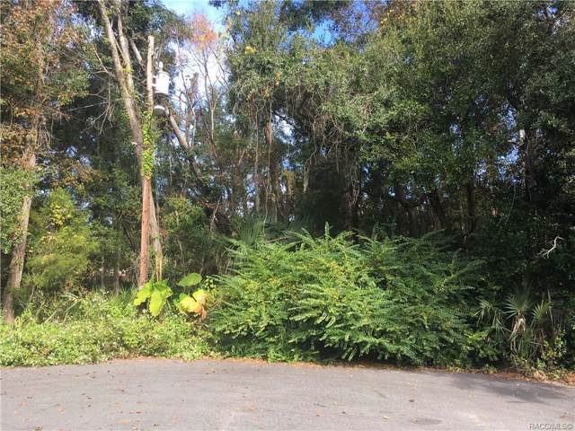 4101 N Eagle Nest Point, Crystal River, FL 34428 (MLS #788261) :: Plantation Realty Inc.