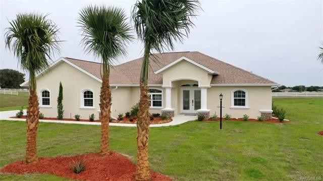2562 W Elm Blossom Street, Beverly Hills, FL 34465 (MLS #788719) :: Plantation Realty Inc.