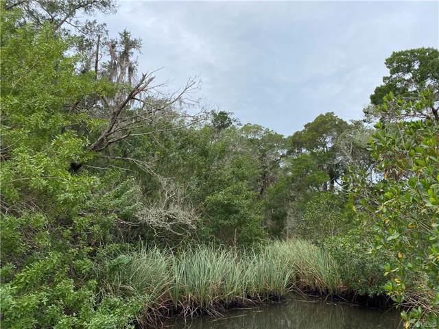 12491 The Homosassa River River, Homosassa, FL 34448 (MLS #789043) :: Plantation Realty Inc.