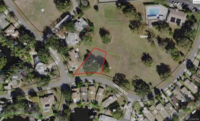 11557 W Clubview Drive, Homosassa, FL 34448 (MLS #789233) :: Plantation Realty Inc.