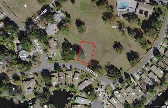 11545 W Clubview Drive, Homosassa, FL 34448 (MLS #789237) :: Plantation Realty Inc.